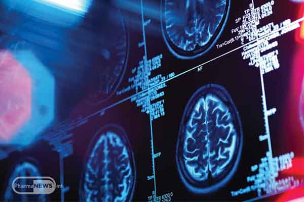Cervello pensiero umano